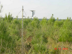 Automatic Data Logger Soil Air Temperature