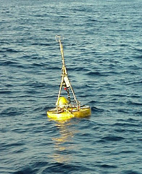 Salinity - Temperature buoy