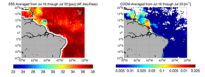 7-day averaged SMOS salinity maps and 7-day averaged merged GSM Meris/Modis CDOM optical measurements in mid-July