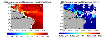7-day averaged SMOS salinity maps and 7-day averaged merged GSM Meris/Modis CDOM optical measurements in mid-August